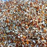 dried orange peel coarse cut