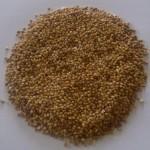 mahlep kernels