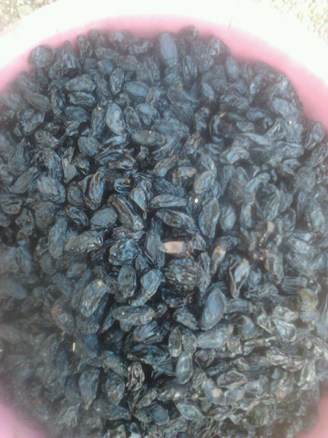 black-seeded-raisins