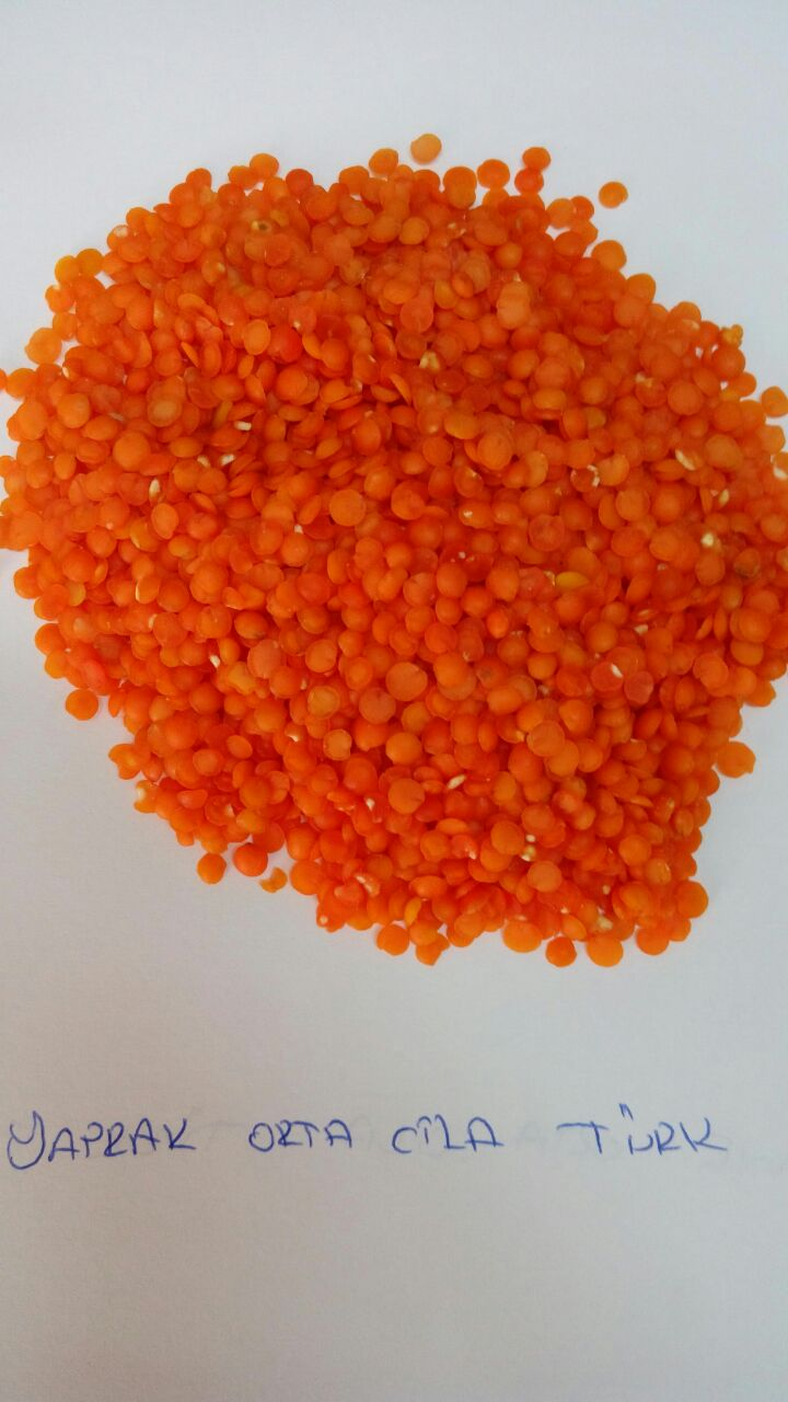 Red-SplitLentils-polished